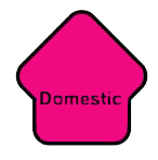 logo domestic